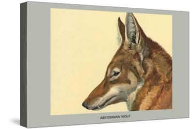 Abyssinian Wolf-Louis Agassiz Fuertes-Stretched Canvas Print