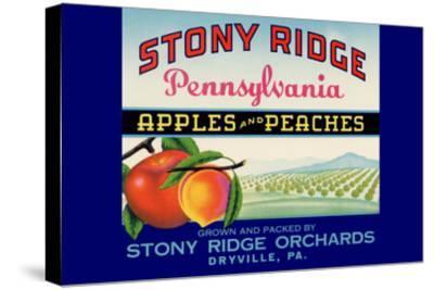 Stony Ridge Pennsylvania Apples and Peaches--Stretched Canvas Print