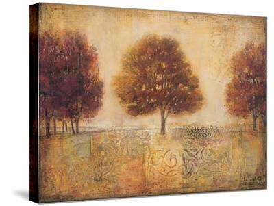 Tapestry Fields I-Ivo-Stretched Canvas Print