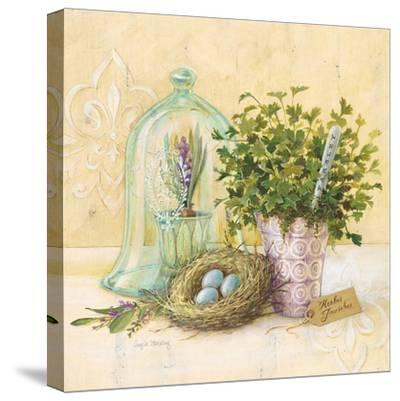 Cook's Garden-Angela Staehling-Stretched Canvas Print