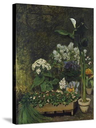 Still-Life with Flowers (Arum and Green House Plants), 1864-Pierre-Auguste Renoir-Stretched Canvas Print