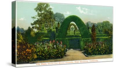 California - Hotel Del Monte View of the Maze Near Monterey-Lantern Press-Stretched Canvas Print