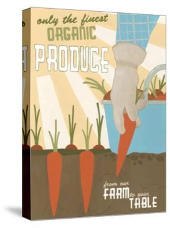 Organic Produce-Erica J^ Vess-Stretched Canvas Print