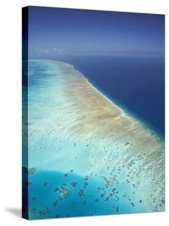 Arlington Reef, Great Barrier Reef Marine Park, North Queensland, Australia-David Wall-Stretched Canvas Print