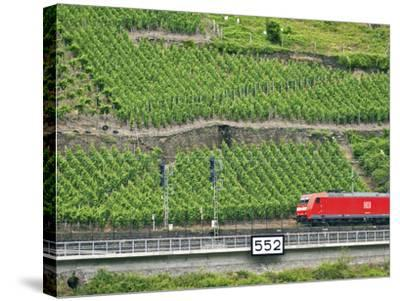 High Speed Train by Rhineland Vineyards, Koblenz, Germany-Miva Stock-Stretched Canvas Print