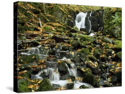 Small Waterfalls Cascading over Moss-Covered Rocks-Norbert Rosing-Stretched Canvas Print