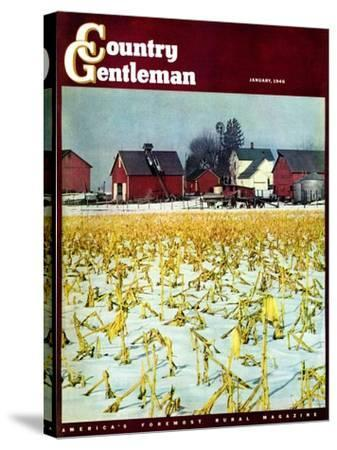 """""""Winter Cornfield,"""" Country Gentleman Cover, January 1, 1946-Thomas Benner-Stretched Canvas Print"""
