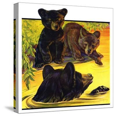 """Bear and Cubs in River,""August 25, 1934-Jack Murray-Stretched Canvas Print"
