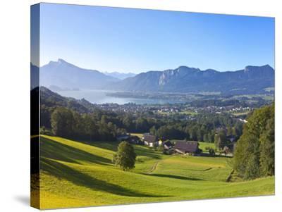 Alpine Meadow, Mondsee, Mondsee Lake, Oberosterreich, Upper Austria, Austria-Doug Pearson-Stretched Canvas Print