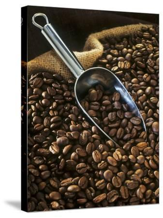 Coffee Beans with Metal Scoop in Sack-Vladimir Shulevsky-Stretched Canvas Print