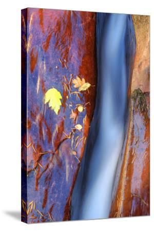 Cobalt Waterflow-Vincent James-Stretched Canvas Print