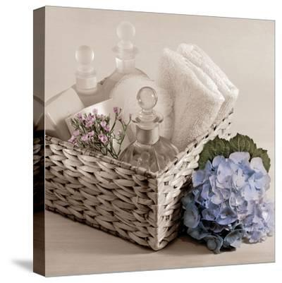 Hydrangea and Basket 2-Julie Greenwood-Stretched Canvas Print