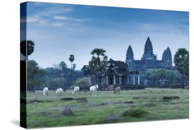 Temple Complex of Angkor Wat, Angkor, UNESCO World Heritage Site, Siem Reap, Cambodia, Indochina-Andrew Stewart-Stretched Canvas Print