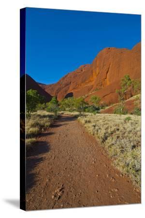 The Olgas (Kata Tjuta), Uluru-Kata Tjuta Nat'l Park, UNESCO Site, Northern Territory, Australia-Michael Runkel-Stretched Canvas Print
