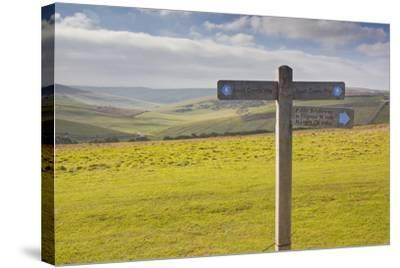 The Rolling Hills of the South Downs National Park Near to Brighton, Sussex, England, UK-Julian Elliott-Stretched Canvas Print