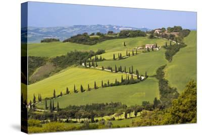Famous Road Winding Through the Tuscan Hillside, Italy-Terry Eggers-Stretched Canvas Print