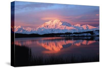 Lake with Mt McKinley, Denali National Park and Preserve, Alaska, USA-Hugh Rose-Stretched Canvas Print