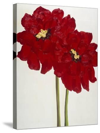Red Splendor 2-Soraya Chemaly-Stretched Canvas Print