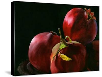 Four Pomegranates-Terri Hill-Stretched Canvas Print