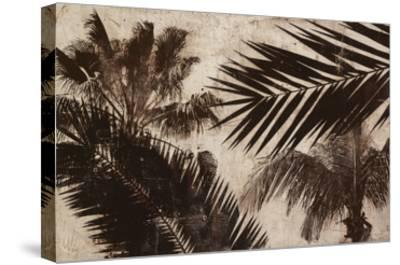 Palms 2-JB Hall-Stretched Canvas Print