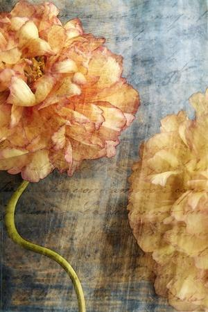 Steel Flower 1-Thea Schrack-Stretched Canvas Print