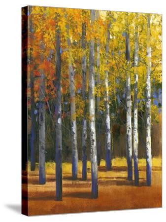Fall in Glory I-Tim O'toole-Stretched Canvas Print