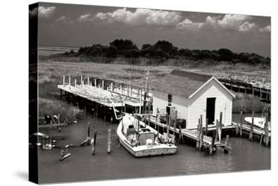 Tangier Island 2-Alan Hausenflock-Stretched Canvas Print
