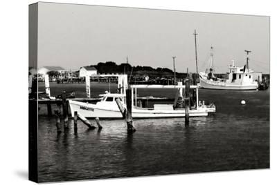 Tangier Island 3-Alan Hausenflock-Stretched Canvas Print