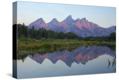 A Reflection of the Grand Teton Range in the Snake River-Barrett Hedges-Stretched Canvas Print