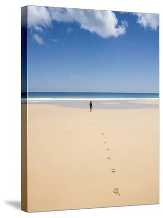 South America, Brazil, Pernambuco, Fernando De Noronha Island-Alex Robinson-Stretched Canvas Print