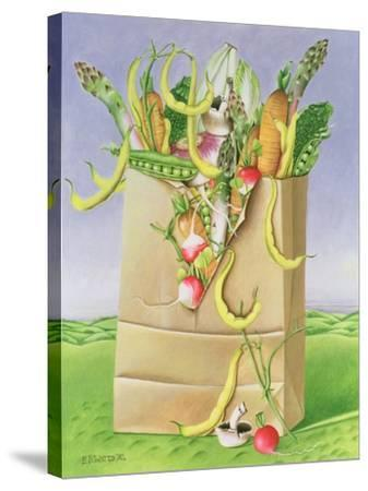 Paper Bag with Vegetables, 1992-E.B. Watts-Stretched Canvas Print