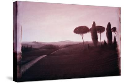 Tuscan Landscape, 1992-Lincoln Seligman-Stretched Canvas Print