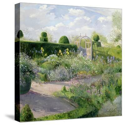 Irises in the Herb Garden, 1995-Timothy Easton-Stretched Canvas Print