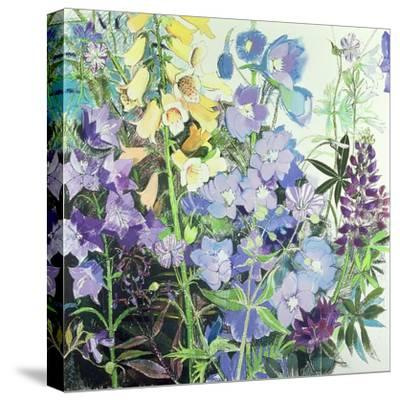 Delphiniums and Foxgloves-Claire Spencer-Stretched Canvas Print