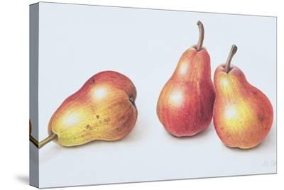 Red Pears, 1996-Margaret Ann Eden-Stretched Canvas Print