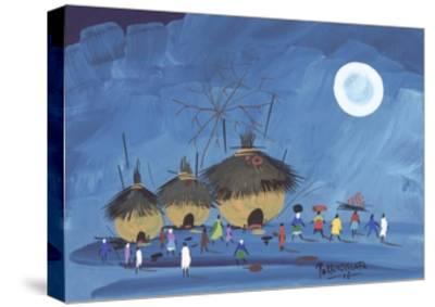 Natural Home, 2006-Oglafa Ebitari Perrin-Stretched Canvas Print
