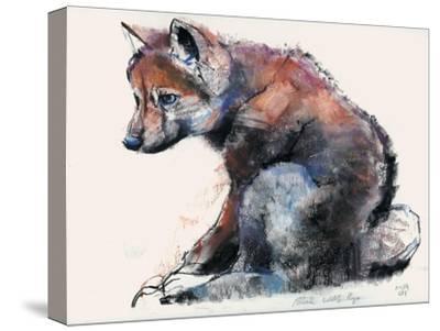 Polish Wolf Pup, 2001-Mark Adlington-Stretched Canvas Print
