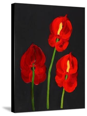 Anthurium-Deborah Barton-Stretched Canvas Print