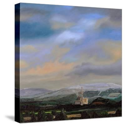 Cement Works, Hope Valley, Derbyshire, 2009-Trevor Neal-Stretched Canvas Print