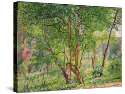 Panshanger Park-Spencer Frederick Gore-Stretched Canvas Print