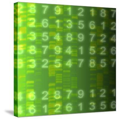 DNA Autoradiogram, Artwork-Mehau Kulyk-Stretched Canvas Print