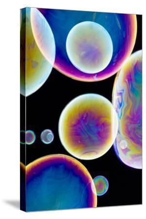 Soap Bubbles-Lawrence Lawry-Stretched Canvas Print