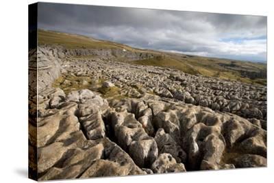Limestone Pavement, Yorkshire-Bob Gibbons-Stretched Canvas Print