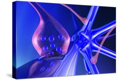 Nerve Synapse-PASIEKA-Stretched Canvas Print