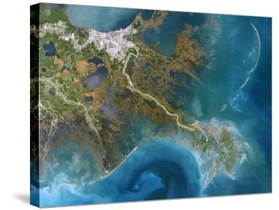 Mississippi Delta, Satellite Image-PLANETOBSERVER-Stretched Canvas Print