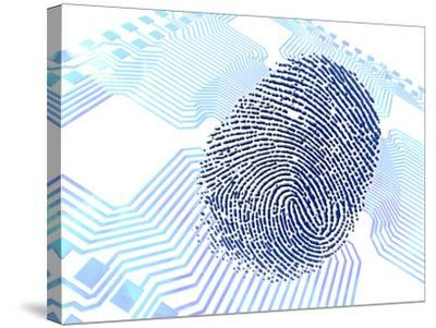 Biometric Fingerprint Scan, Artwork-PASIEKA-Stretched Canvas Print