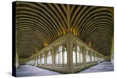 Winchester College Cloister Arcades-Paul Rapson-Stretched Canvas Print