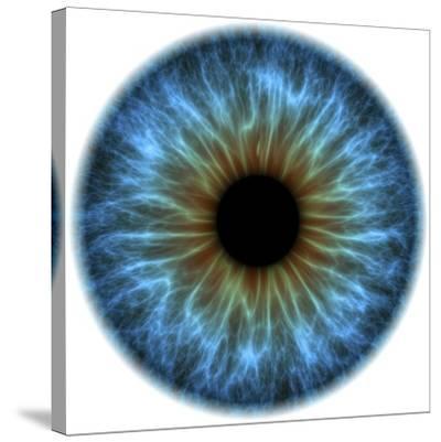 Eye, Iris-PASIEKA-Stretched Canvas Print