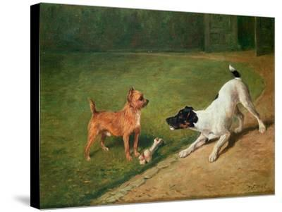 Fighting over a Bone-John Emms-Stretched Canvas Print