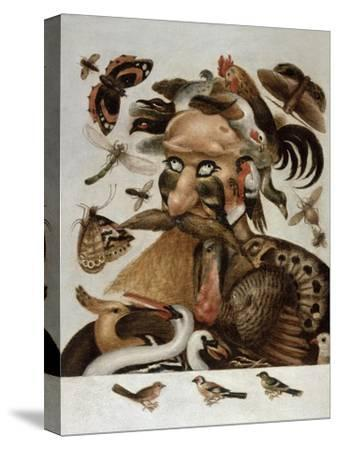 An Allegory of Air-Giuseppe Arcimboldo-Stretched Canvas Print
